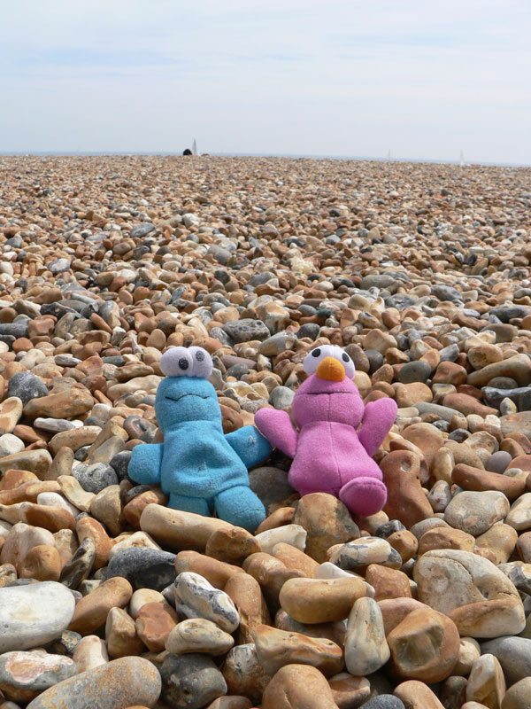 Mr and Mrs Cookie on the beach at Brighton, United Kingdom
