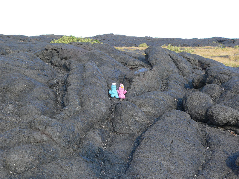 Mr and Mrs Cookie relaxing on lava
