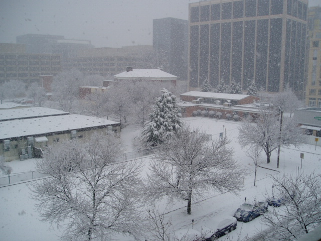 Snow at Rosslyn