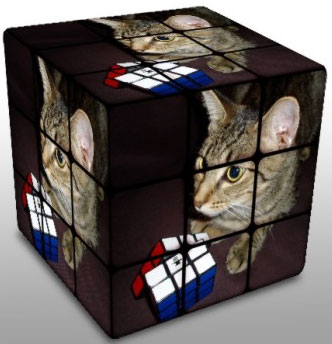 Ashley as a cube